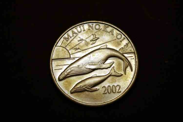 Coin_resized